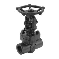 forged steel gate valve 200
