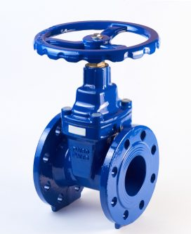 Industrial pipeline wedge gate valve with rubber wedge on a white background