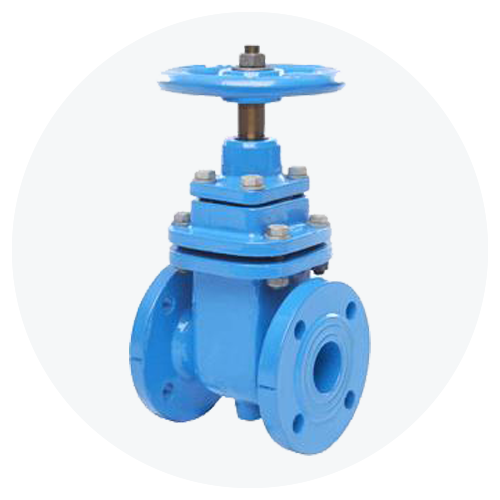 Seated Gate Valve